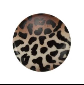 125700BA_Leopard_