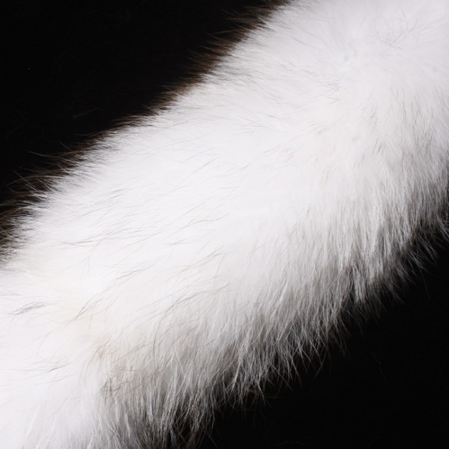 raccoon fur white