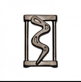 slider snake